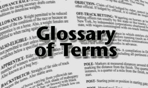 Sports Betting Terminology - glossary online betting